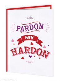 Pardon my hardon (FIZZ036)