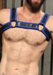 Mr S Leather Neoprene Bulldog Harness Black Blue