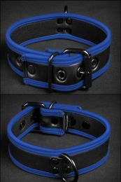 Mr S Leather Neoprene Puppy Collar Black Blue