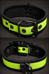 Mr S Leather Neoprene Puppy Collar Lime Black