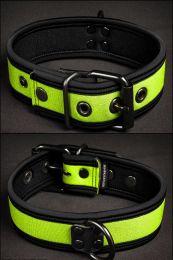 Mr S Leather Neoprene Puppy Collar Lime Black
