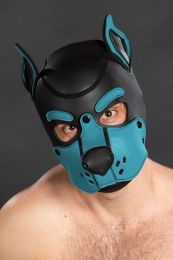 Mr S Leather Neoprene K9 Puppy Hood Black Aqua