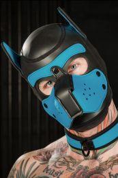 Mr S Leather Neoprene Puppy Hood Black Aqua