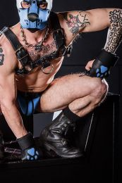 Mr S Leather Open Paw Puppy Gloves Black Cobalt