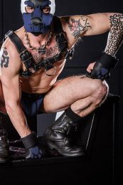 Mr S Leather Open Paw Puppy Gloves Black Navy