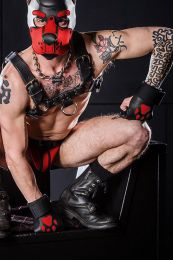 Mr S Leather Open Paw Puppy Gloves Black Red