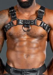 Mr S Leather Piped Bulldog Harness